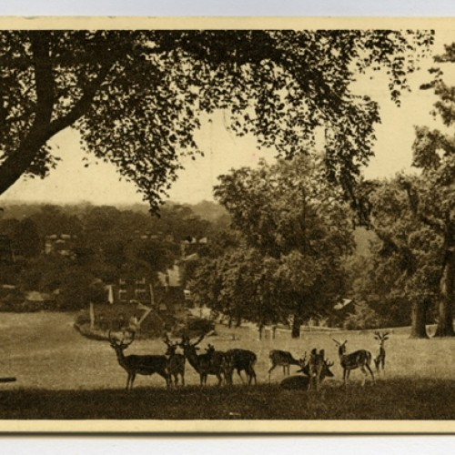 Lost buildings in Richmond Park: the Prime Minister's school and a magnificent mansion